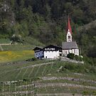 The Church in the vineyards by annalisa bianchetti