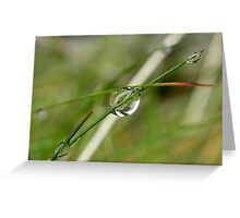 Reflections on a water droplet Greeting Card