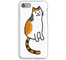 Smiling Calico Cat iPhone Case/Skin
