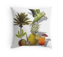 parrot in a hat 2 Throw Pillow