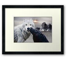 wolves kiss Framed Print