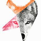 Wild by Eric Fan