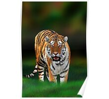 Tiger on Green Poster