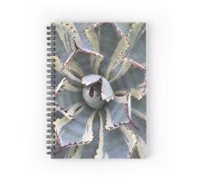 Kissho Khan Agave Spiral Notebook