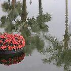 Floating in the Palms by John  Kapusta