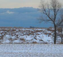 Cold Lone Tree Sticker