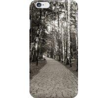 Monochrome cobblestone alley in the park iPhone Case/Skin