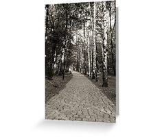 Monochrome cobblestone alley in the park Greeting Card