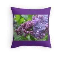Lavender Lilac Throw Pillow (Purple Border) Throw Pillow
