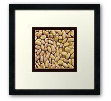 Dried Bean 1 Framed Print