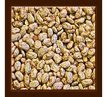 Dried Bean 3 Photographic Print