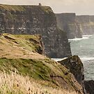 cliffs of moher scenic sunset landscape seascape ireland by Noel Moore Up The Banner Photography
