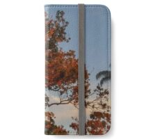 san diego sunset iPhone Wallet/Case/Skin