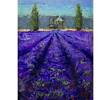 Plein Air Lavender Landscape and Farm House Impressionistic Painting Photographic Print