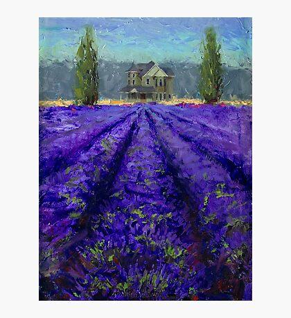 Plein Air Lavender Landscape and Farm House Impressionistic Painting Photographic Print