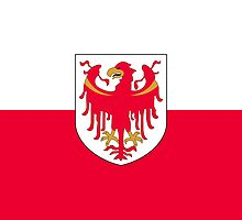 Flag of Province of South Tyrol  by abbeyz71