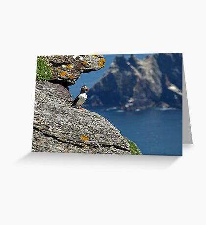 Puffin Skellig Island, Ireland Greeting Card
