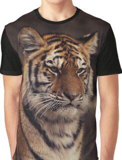 siberian tiger Graphic T-Shirt