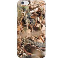 Minsmere Adder iPhone Case/Skin
