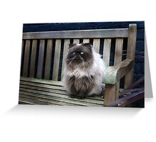 The Magnificats Tom Card #1 Greeting Card