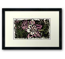 Artistic woodcut Colorado columbine flower Framed Print
