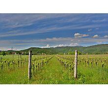 Spring Landscape Near Cividale del Friuli Photographic Print