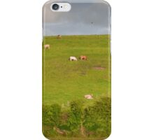 rural ireland scenic nature cows countryside landscape iPhone Case/Skin