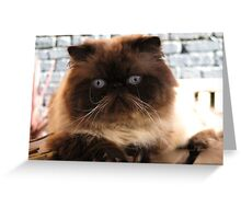 The Magnificats Tom Card #3 Greeting Card