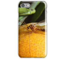 Yellow Insect on an Orange iPhone Case/Skin