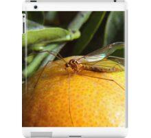 Yellow Insect on an Orange iPad Case/Skin