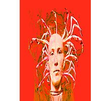 Red Scorpion Photographic Print
