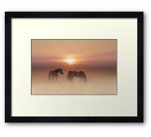 Horses in a misty dawn'... Framed Print