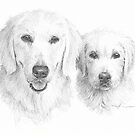White dogs drawing by Mike Theuer