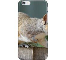Creeping Squirrel iPhone Case/Skin