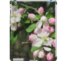 Pink And White Apple Flowers iPad Case/Skin