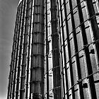 Double Silo by Roger Passman