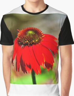 Salsa Red Coneflower Graphic T-Shirt