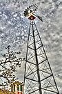 Kline Creek Farm Windmill by Roger Passman