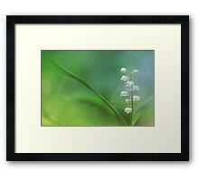 Lily of the Valley... Framed Print