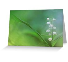 Lily of the Valley... Greeting Card