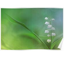 Lily of the Valley... Poster