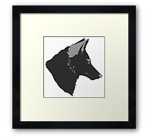 Sly Coyote Framed Print