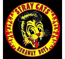 Stray Cats  (Runaway Boys) Colour Photographic Print