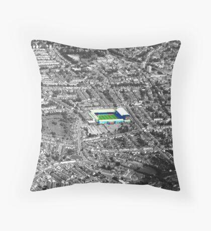 Selhurst Park Throw Pillow