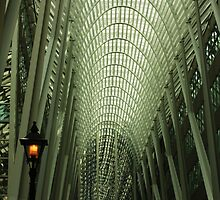 Galleria by Ursula Rodgers