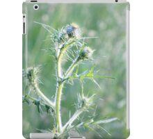 Spring Sunset on Bull Thistle iPad Case/Skin