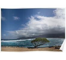 Wild Coast - Laie Point, North Shore, Oahu, Hawaii Poster