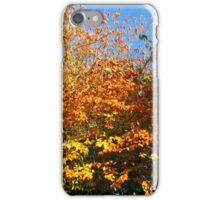 Early November Morning iPhone Case/Skin