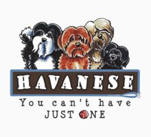 Havanese :: You Can't Have Just One by offleashart
