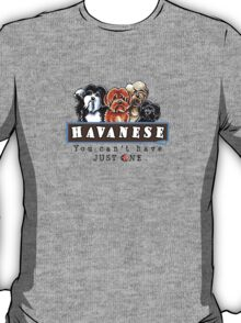 Havanese :: You Can't Have Just One T-Shirt